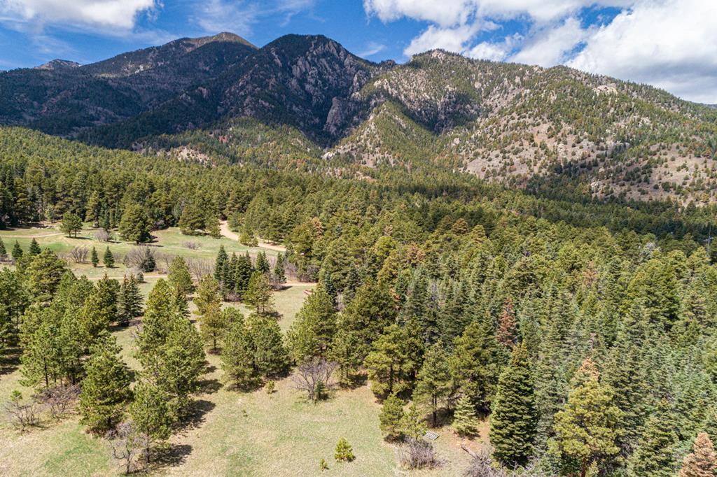 MLS# 185752 - 12 - 11010 Bartlett Trail , Rye, CO 81069