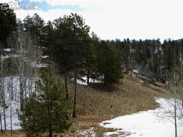 MLS# 8318434 - 1 - 12  Princess Way, Cripple Creek, CO 80813