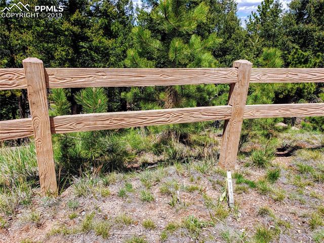 MLS# 5414987 - 15 - 520 Falcons Rest Place, Woodland Park, CO 80863