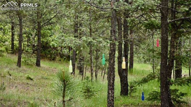 MLS# 2843860 - 1 - 5218  Little Turkey Creek Road, Colorado Springs, CO 80926