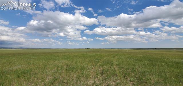 MLS# 9639998 - 14 - 7021 Buckskin Ranch View, Peyton, CO 80831