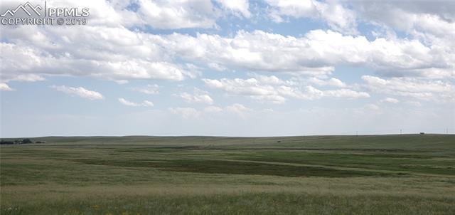 MLS# 9639998 - 21 - 7021 Buckskin Ranch View, Peyton, CO 80831