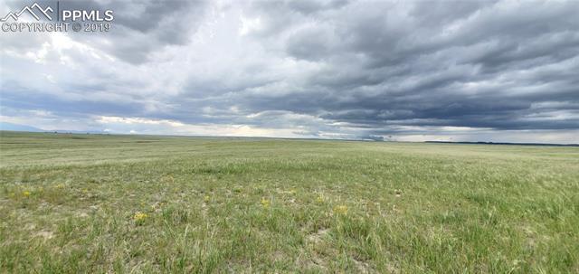 MLS# 9639998 - 10 - 7021 Buckskin Ranch View, Peyton, CO 80831