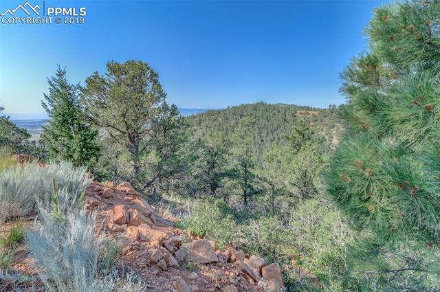 MLS# 2593086 - 1 - 15770  Ridge Ride Point, Colorado Springs, CO 80926