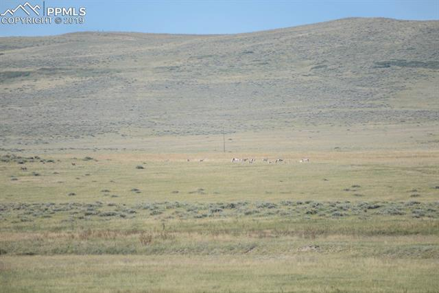 MLS# 1604161 - 11 - 133 County Road , Simla, CO 80835