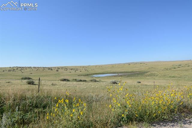 MLS# 1604161 - 133 County Road , Simla, CO 80835