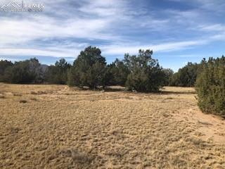 MLS# 3441086 - 1 - Lot 5  Bandito Trail, Florence, CO 81226