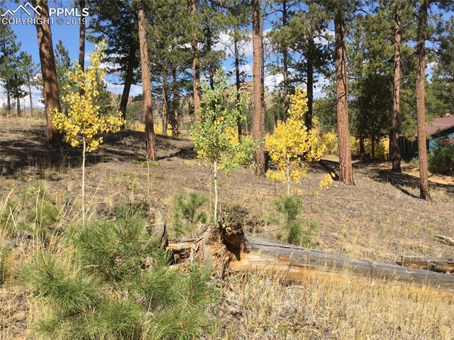MLS# 5006318 - 2 - 511 Turkey Creek Drive, Sedalia, CO 80135