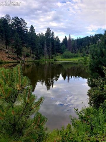 MLS# 5006318 - 14 - 511 Turkey Creek Drive, Sedalia, CO 80135