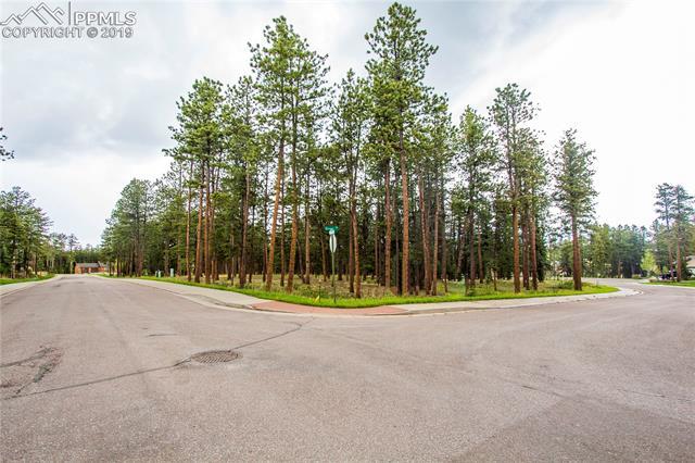 MLS# 3342114 - 1 - 630  Meadowlark Lane, Woodland Park, CO 80863