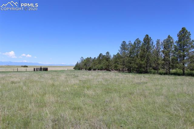 MLS# 4665326 - 10 - 206 N Dinner Bell Drive, Calhan, CO 80808