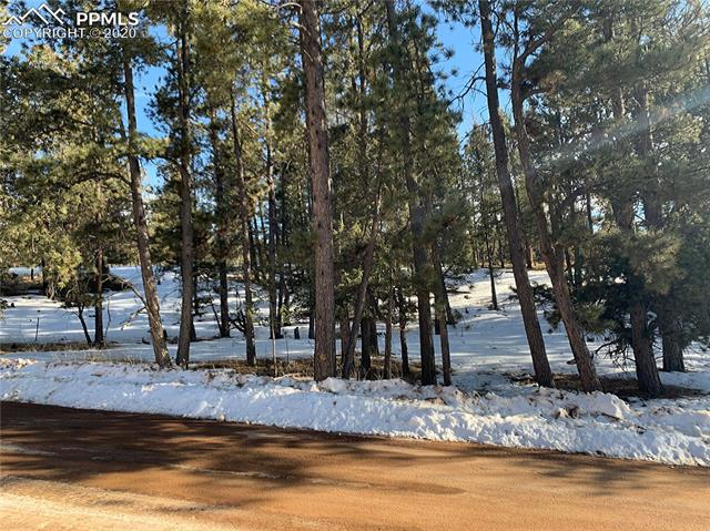 MLS# 2681675 - 1 - 158 Paint Pony Lane, Florissant, CO 80816