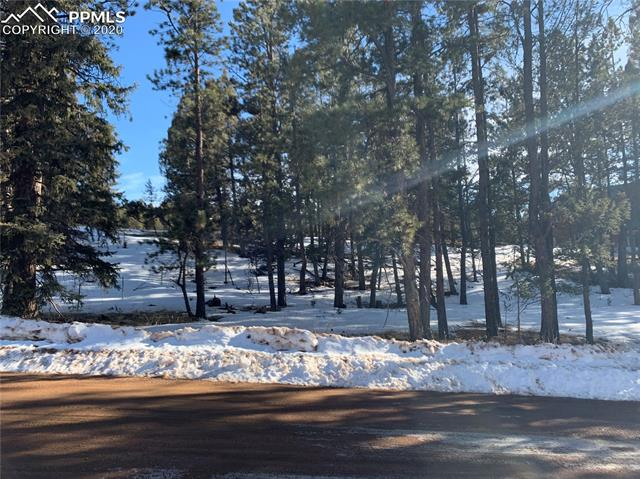 MLS# 2681675 - 15 - 158 Paint Pony Lane, Florissant, CO 80816