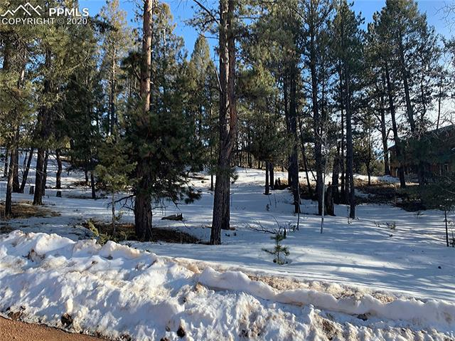 MLS# 2681675 - 17 - 158 Paint Pony Lane, Florissant, CO 80816