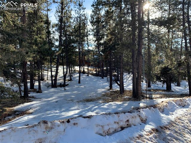 MLS# 2681675 - 18 - 158 Paint Pony Lane, Florissant, CO 80816