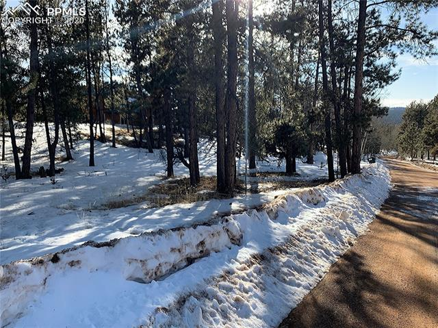 MLS# 2681675 - 19 - 158 Paint Pony Lane, Florissant, CO 80816