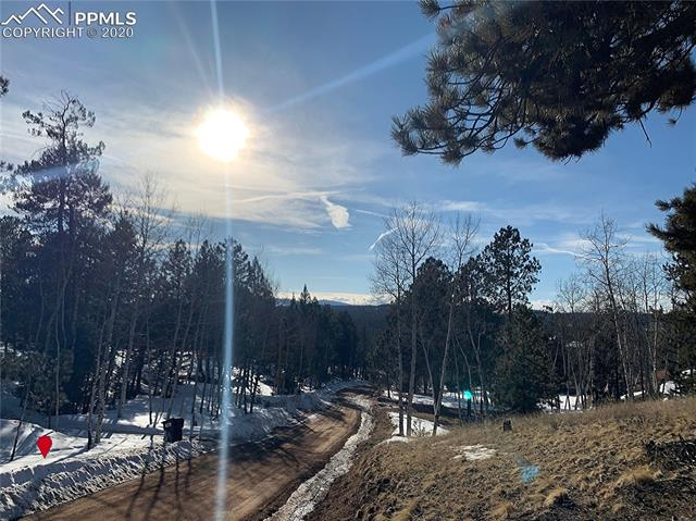 MLS# 2681675 - 20 - 158 Paint Pony Lane, Florissant, CO 80816