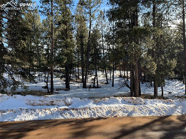 MLS# 2681675 - 4 - 158 Paint Pony Lane, Florissant, CO 80816