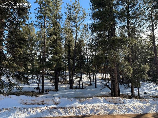 MLS# 2681675 - 6 - 158 Paint Pony Lane, Florissant, CO 80816