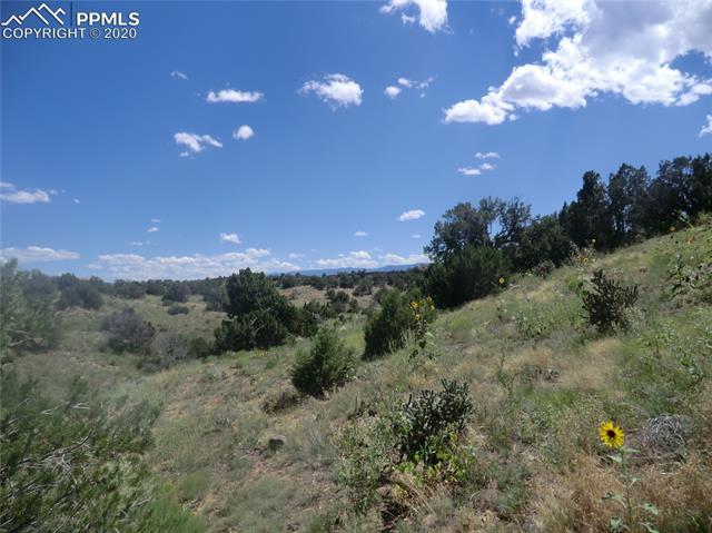 MLS# 8045896 - 2 - 1239 Canon Ridge Road, Canon City, CO 81212