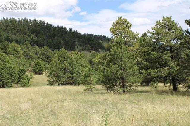 MLS# 3629162 - 13 - 000Penrose Circle, Cripple Creek, CO 80813