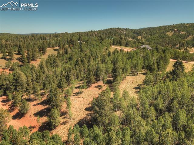 MLS# 6781989 - 12 - 985 May Queen Drive, Cripple Creek, CO 80813