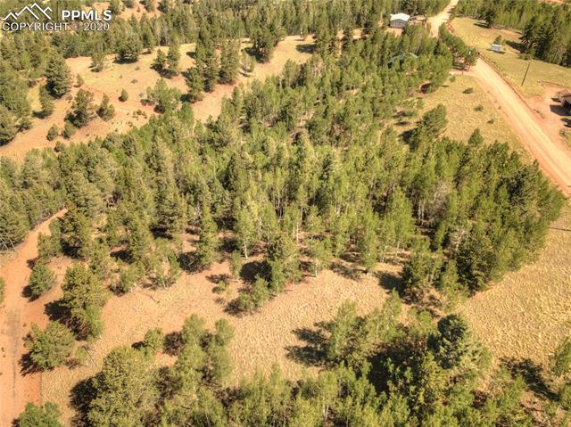 MLS# 6781989 - 18 - 985 May Queen Drive, Cripple Creek, CO 80813