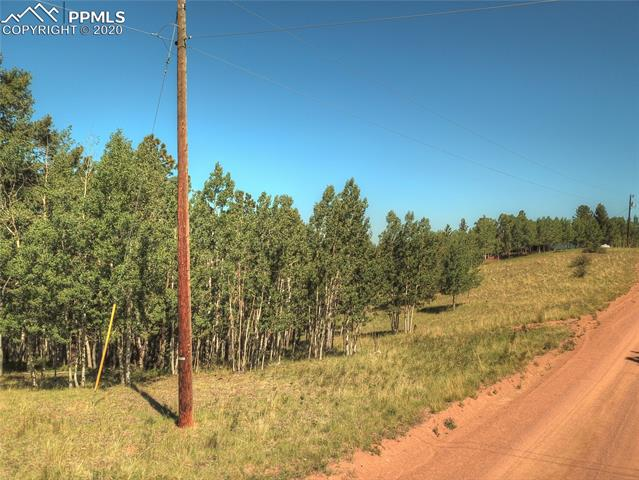 MLS# 6781989 - 4 - 985 May Queen Drive, Cripple Creek, CO 80813