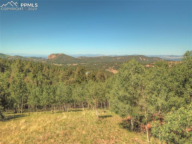 MLS# 6781989 - 7 - 985 May Queen Drive, Cripple Creek, CO 80813
