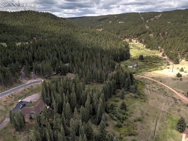 MLS# 9009047 - 18 - 240 Iron Eagle Point, Woodland Park, CO 80863