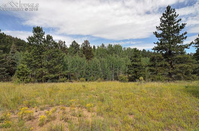 MLS# 2015525 - 1 - 8  Camp Drive, Westcliffe, CO 81252