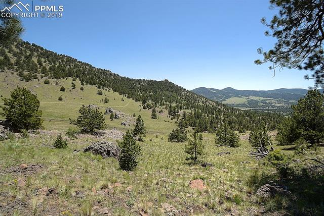 MLS# 3927965 - 31 - 396 Eagle Nest Trail, Guffey, CO 80820