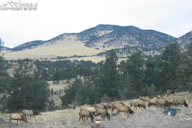 MLS# 3927965 - 40 - 396 Eagle Nest Trail, Guffey, CO 80820
