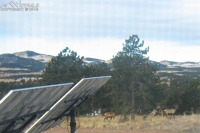 MLS# 3927965 - 41 - 396 Eagle Nest Trail, Guffey, CO 80820