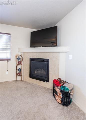 MLS# 1387538 - 1 - 2610  Winterbourne Street, Colorado Springs, CO 80910