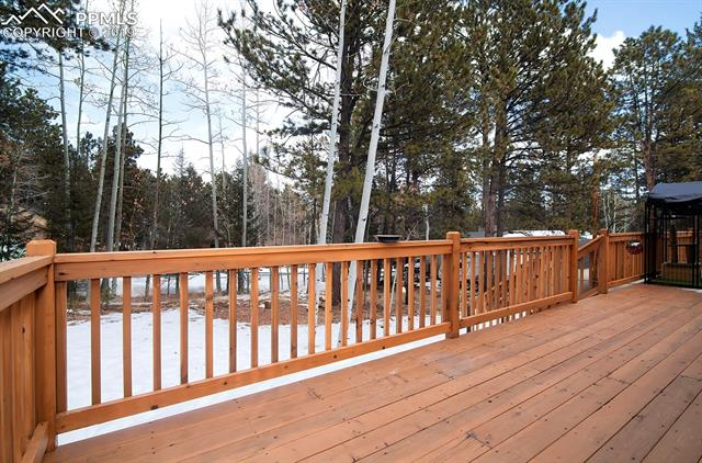 MLS# 9386754 - 21 - 1314 W Browning Avenue, Woodland Park, CO 80863