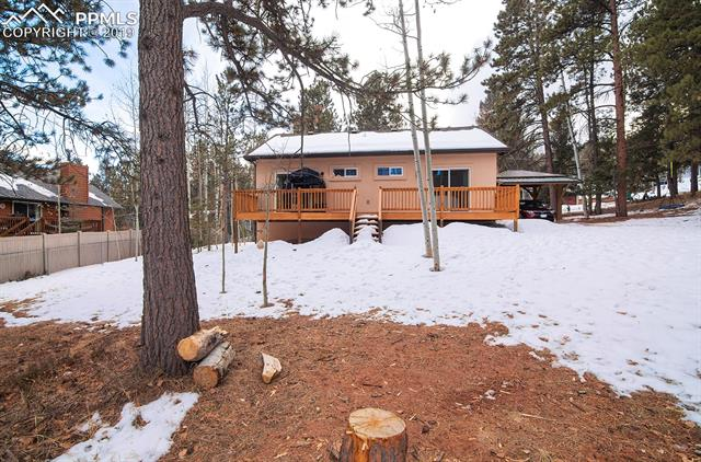 MLS# 9386754 - 23 - 1314 W Browning Avenue, Woodland Park, CO 80863