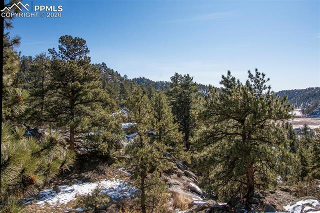 MLS# 7063741 - 35 - 83 Corral Circle, Florissant, CO 80816