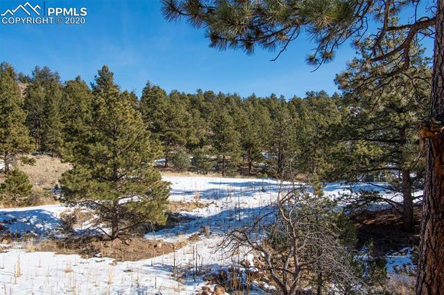 MLS# 7063741 - 36 - 83 Corral Circle, Florissant, CO 80816