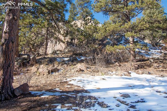 MLS# 7063741 - 39 - 83 Corral Circle, Florissant, CO 80816
