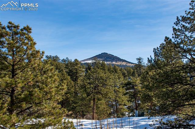 MLS# 7063741 - 40 - 83 Corral Circle, Florissant, CO 80816