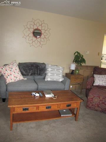 MLS# 8438545 - 8 - 535 Three Eagles Street, Colorado Springs, CO 80905