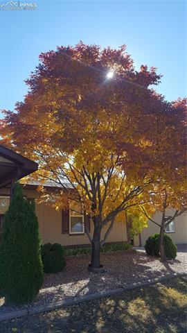MLS# 3159119 - 35 - 13560 Cottontail Drive, Peyton, CO 80831