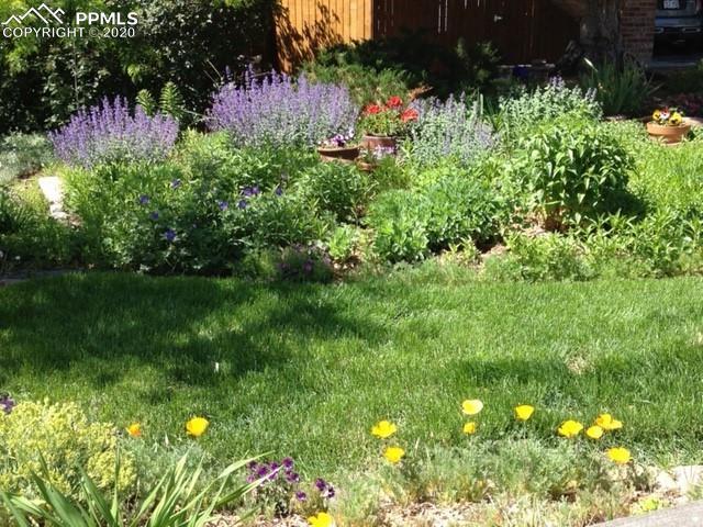 MLS# 1185483 - 33 - 4840 Ramblewood Drive, Colorado Springs, CO 80920