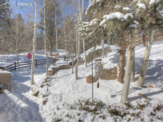MLS# 8683134 - 37 - 449 Twin Lakes Drive, Divide, CO 80814