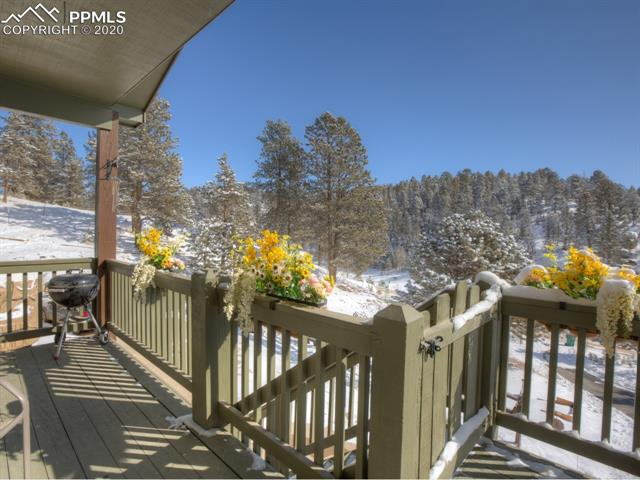MLS# 8683134 - 5 - 449 Twin Lakes Drive, Divide, CO 80814