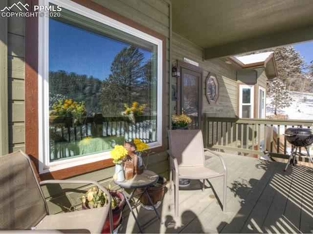 MLS# 8683134 - 6 - 449 Twin Lakes Drive, Divide, CO 80814