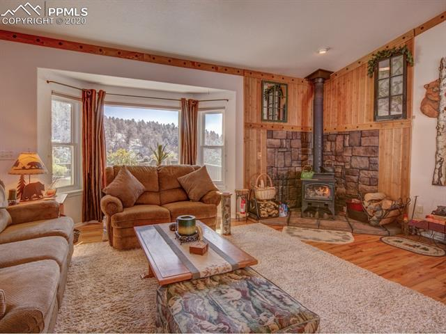 MLS# 8683134 - 7 - 449 Twin Lakes Drive, Divide, CO 80814