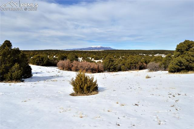 MLS# 3150314 - 4 - 3066 Comanche Drive, Walsenburg, CO 81089
