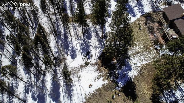 MLS# 1581218 - 31 - 126 Druid Trail, Florissant, CO 80816